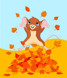 Счастливая мышь падения Стоковая Фотография RF