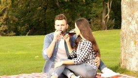 Счастливая пара выпивает вино сток-видео