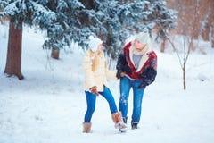 Счастливая пара едет скелетон в снеге в парке в выигрыше Стоковое Изображение