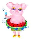 Счастливая свинья наслаждается жизнью изображение иллюстрации летания клюва декоративное своя бумажная акварель ласточки части стоковые фотографии rf