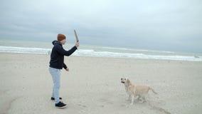 Счастливая семья играет с собакой на пляже, дразня ее с ручкой сток-видео