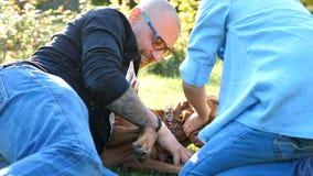 Счастливая семья играя с их собакой в парке акции видеоматериалы