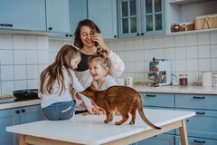 Счастливая семья имея потеху в кухне стоковое изображение rf