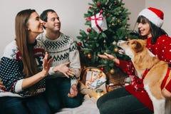 Счастливая семья имея потеху с настоящими моментами и играя с собакой на ch Стоковое фото RF