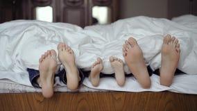 Счастливая семья пряча под одеялом и играя совместно на кровати Родители тратя свободное время с их сыном видеоматериал