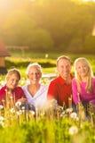 Счастливая семья сидя в лужке лета стоковая фотография rf