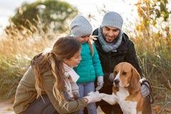 Счастливая семья с собакой бигля outdoors в осени стоковые фото