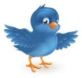 Счастливая синяя птица Стоковое Изображение RF