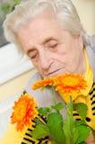 Счастливая старая gray-haired женщина стоковая фотография