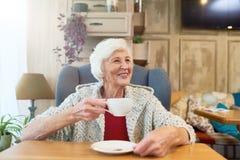 Счастливая старшая дама Enjoying Чай Стоковое фото RF