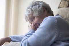 Счастливая старшая женщина внутри помещения смеясь над стоковые фото