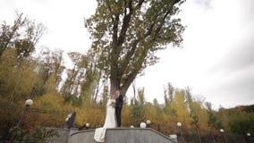 Счастливая стойка пар свадьбы перед большим деревом Предпосылка леса акции видеоматериалы