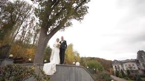 Счастливая стойка пар свадьбы перед большим деревом Предпосылка леса видеоматериал