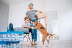Счастливое движение семьи в новой квартире - матери, сыне и бигле стоковые фото