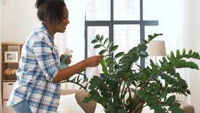 Счастливое комнатное растение чистки женщины дома сток-видео