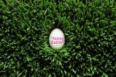 Счастливое пасхальное яйцо спрятанное в траве Стоковые Изображения RF