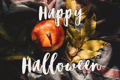 Счастливое положение квартиры знака текста хеллоуина тыква осени с colorfu Стоковое Изображение RF