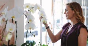 Счастливое предприниматель флориста смотря цветки стоковая фотография