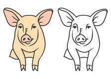 Счастливое свиньи расцветки милое красивое бесплатная иллюстрация