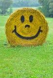 счастливое сено Стоковые Фотографии RF