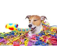 Счастливое celeberation собаки Нового Года Стоковое Изображение RF
