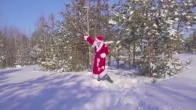 Счастливое Santaklaus скачет, танцует и радуется в замедленном движении леса зимы акции видеоматериалы