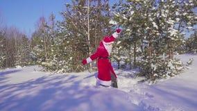 Счастливое Santaklaus скачет, танцует и радуется в замедленном движении леса зимы видеоматериал