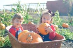 Счастливые девушки сидя внутри тачки на заплате тыквы поля Стоковое Фото