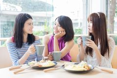 Счастливые друзья женщины в ресторане Стоковые Фотографии RF