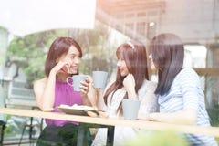 Счастливые друзья женщины в ресторане Стоковая Фотография