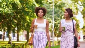 Счастливые женщины или друзья идя вдоль лета паркуют акции видеоматериалы