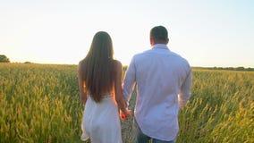 Счастливые молодые пары держа руки и идя через пшеничное поле на заходе солнца лета, имеющ потеху outdoors Любовь, лето видеоматериал