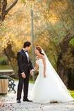 Счастливые пары венчания Стоковое Изображение RF