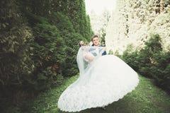 Счастливые пары свадьбы идя в ботанический парк Стоковые Фото