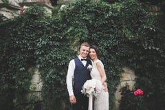 Счастливые пары свадьбы идя в ботанический парк Стоковое фото RF