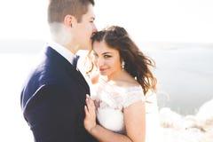 Счастливые пары свадьбы оставаясь над красивым ландшафтом стоковое изображение