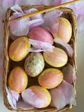 Счастливые пасхальные яйца Стоковое фото RF