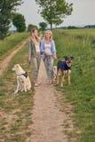 Счастливые смеясь над молодые женщины идя их собаки Стоковые Изображения