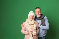 Счастливые старшие пары в теплых одеждах на предпосылке цвета Стоковое Фото