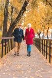 счастливые старшие пары держа руки и идти стоковое фото rf