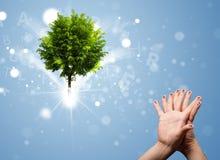 Счастливые smileys пальца с зеленым волшебным накаляя деревом Стоковые Изображения RF