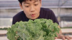 Счастливый азиатский мальчик с зеленым салатом для здорового питания, выражать счастливый для еды овощей видеоматериал