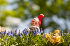 Счастливый гоблин сада с кроликом на солнечный день Стоковое Фото