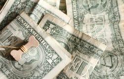 Счастливый год концепции 2018 собаки Косточка на долларах США Предпосылка долларов США Процветание, везение и успех стоковое фото