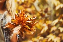 Счастливый день в парке осени Стоковые Фотографии RF
