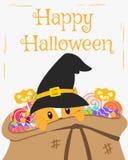 Счастливый дизайн карточки хеллоуина, кот внутри вектора шаржа мешка конфет бесплатная иллюстрация