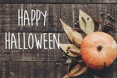 Счастливый знак текста хеллоуина, поздравительная открытка положение квартиры изображения падения B Стоковые Изображения