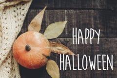 Счастливый знак текста хеллоуина, поздравительная открытка положение квартиры изображения падения B Стоковые Фото
