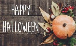 Счастливый знак текста хеллоуина, поздравительная открытка положение квартиры изображения падения B Стоковое фото RF