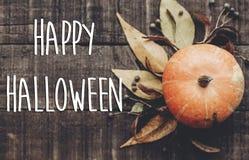 Счастливый знак текста хеллоуина, поздравительная открытка положение квартиры изображения падения B Стоковая Фотография RF